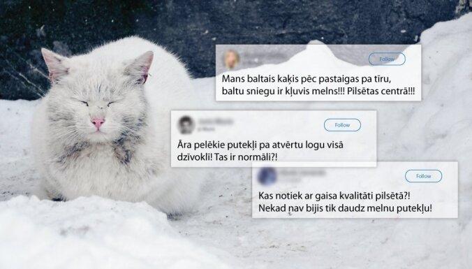 kaķu opciju stratēģija
