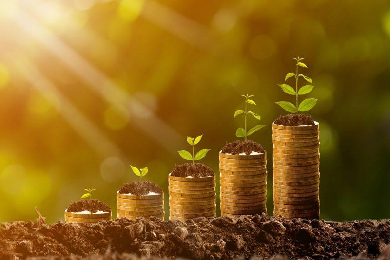 papildu ienākumi - pasīvie ienākumi