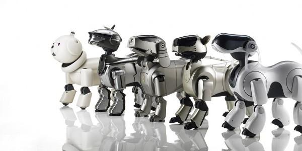 finanšu robotu binārās opcijas