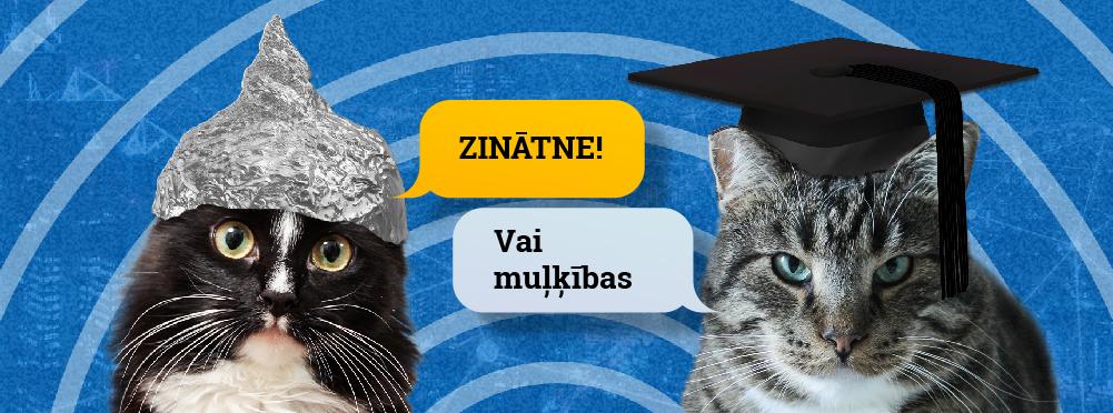 Toms kaķis nopelna daudz naudas)